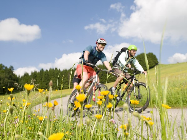 Mountainbiken Natur